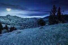 Net bos op een berghelling bij nacht Stock Foto's