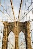 The Net - Brooklyn Bridge. Brooklyn Bridge cables forming a huge net Royalty Free Stock Image