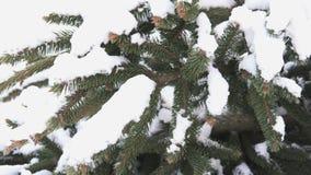 Net detail in sneeuw stock footage