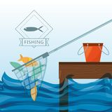 Net with fish and bucket. Vector illustration Royalty Free Stock Photography