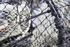 Net on Fish trap photographed up close. Close up photography of the knots in a fish trap, fith other fish nets inside, blurred out Stock Photos