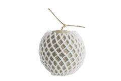 Net foam  wrap Melon on white background Royalty Free Stock Image
