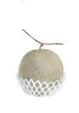 Net foam  wrap Melon on white background Royalty Free Stock Photos
