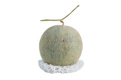 Net foam  wrap Melon on white background Royalty Free Stock Photography