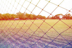 Net. Of the football field Stock Image