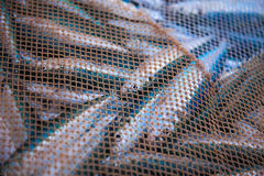 Net full of fish Royalty Free Stock Photo