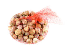 Net of garlic bulbs Royalty Free Stock Photo