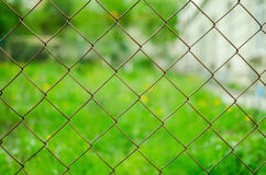 Net on green background Stock Photography