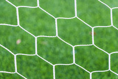 Net on green grass Stock Image