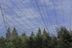 Net over Aviary. A huge net cast over an aviary Stock Photos
