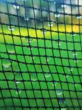 Net pattern with dew drop stock images
