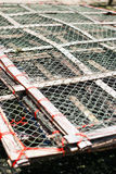 The net for Salted fish Royalty Free Stock Photos