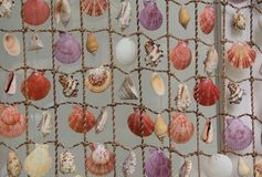 Net with seashells Royalty Free Stock Image