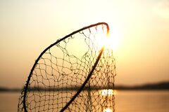 Net Silhouette Royalty Free Stock Images