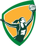 Netball Player Catching Ball Shield Retro Royalty Free Stock Image