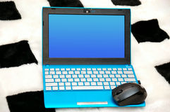 Netbook with a mouse Royalty Free Stock Photo