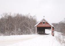 Netcher väg täckt bro Royaltyfri Fotografi