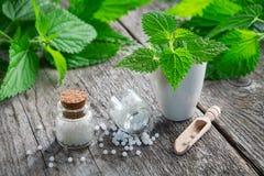 Netel het helen kruiden, mortier en flessen van homeopathische druppeltjes homeopathie royalty-vrije stock afbeelding