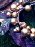 Netelige kroon Royalty-vrije Stock Foto