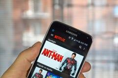 Netflix APP am androiden Handy stockbild