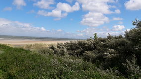 Netherland. Beach in netherland Stock Image