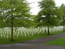 Netherlands American Cemetery. A World War II military cemetery in the Netherlands with 8,301 headstones set in long curves Royalty Free Stock Images