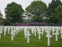 Netherlands American Cemetery. A World War II military cemetery in the Netherlands with 8,301 headstones set in long curves Royalty Free Stock Image