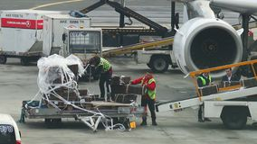 23-11-2019 Netherlands, Amsterdam: An airport staff loading the baggage on the plane - Turkish Airlines