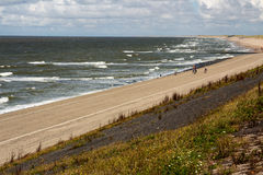 Netherlands beach. Lawn sky sea Royalty Free Stock Images