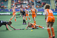 Netherlands beats Belgium during the Hockey World Cup 2014 Stock Images