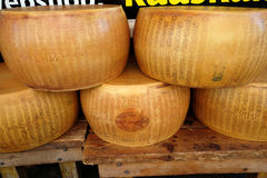Netherlands cheese Royalty Free Stock Photography