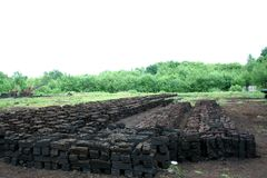 Peat colony and open air musuem in the village of Barger-Compascuum Royalty Free Stock Photo
