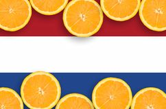 Netherlands flag in citrus fruit slices horizontal frame. Netherlands flag in horizontal frame of orange citrus fruit slices. Concept of growing as well as royalty free illustration