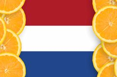 Netherlands flag in citrus fruit slices vertical frame. Netherlands flag in vertical frame of orange citrus fruit slices. Concept of growing as well as import royalty free illustration