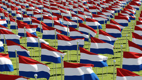 Netherlands flags in green field Royalty Free Stock Image