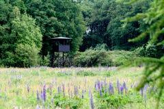Watch-tower of Westerbork transit camp. Netherlands,Holland,Dutch,Drenthe,Westerbork,august 2016:watch-tower of Westerbork transit camp stock photo
