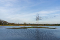 Netherlands lake Royalty Free Stock Image
