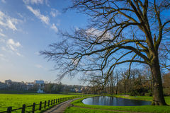 Netherlands park stock photos