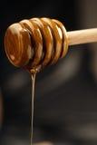 Nettare dell'ape Immagini Stock