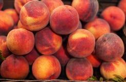 Nettarine fresche organiche nel mercato Raccolto Foo della nettarina Immagine Stock Libera da Diritti