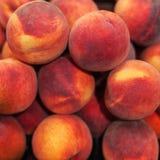 Nettarine fresche organiche nel mercato Raccolto Foo della nettarina Fotografia Stock