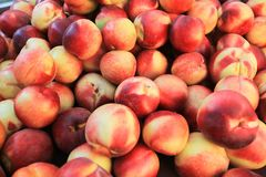 Nettarine organiche fresche da un mercato di California Fotografie Stock Libere da Diritti