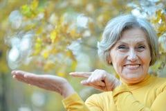 Nette alte Frau Lizenzfreie Stockfotos