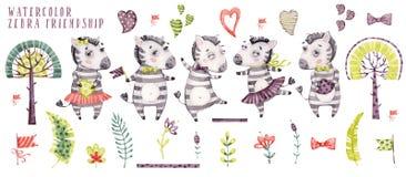 Nette Aquarellkarikatur-Zebrasammlung lizenzfreie abbildung