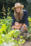 Nette blonde Gartenarbeit am sonnigen Tag Lizenzfreie Stockfotos