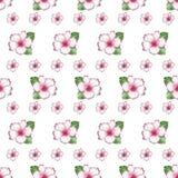 Nette Blumen des nahtlosen Musterhintergrundes der Azalee Stockfotos