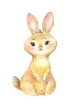 Nette braune Kaninchenillustration Lizenzfreie Stockbilder