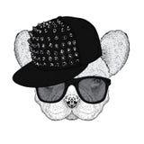 Nette Bulldogge in einer Kappe mit den Dornen und den Gläsern Vector Illustration für eine Postkarte oder ein Plakat Lustiger Hun lizenzfreie abbildung