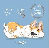 Nette Corgi-Hundewelpen-Schlaf-Vektor-Fahne Waliser-Kurzschluss Fox-Haustier-Charakter-Rest-Haltungs-Plakat Wenig nettes Brown-Hü vektor abbildung