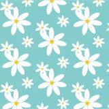 Nette Daisy Pattern Stockfoto
